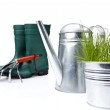 Garden tools and watering can with grass on white — Stock Photo