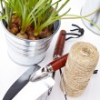 Stock Photo: Garden tools and watering can with grass on white