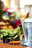 Açık bahçe aletleri ve çiçekler — Stok fotoğraf