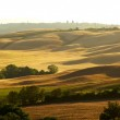 Scenic view of typical Tuscany landscape, Italy — Stock Photo #21745293