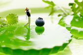 Miniature Figures playing golf on fruits — Stock Photo