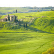 Countryside, Tuscany, Italy - Stock Photo