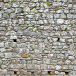 Old stone wall background — Stock Photo #24838679