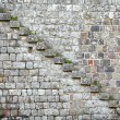 Old stone wall background — Stock Photo #24838729