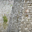 Old stone wall background — Stock Photo #24838749