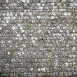Old stone wall background — Stock Photo #24838807