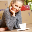 Young beautiful woman with packages for house moving — Stock Photo #24839247