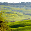 Spring Tuscany — Stock Photo