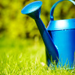 Watering can in garden - Stock Photo