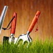Autumn garden tools background — Stock Photo