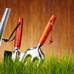 Autumn garden tools background — Stock Photo #24912541