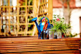 Watering can in garden — Stock Photo