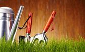 Automne fond d'outils de jardin — Photo
