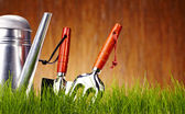 Autumn garden tools background — Photo