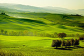 Kırsal, san quirico orcia, toskana, i̇talya — Stok fotoğraf