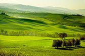 Landsbygden, san quirico orcia, toscana, italien — Stockfoto