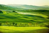 Platteland, san quirico orcia, toscane, italië — Stockfoto