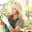 Woman working in garden center — Stock Photo #25234131