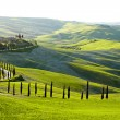 Countryside, San Quirico d'Orcia , Tuscany, Italy — Stock Photo #25551243