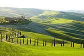 Countryside, San Quirico d'Orcia , Tuscany, Italy — Photo