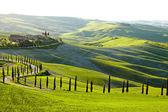 Venkově, san quirico d'orcia, toskánsko, itálie — Stock fotografie
