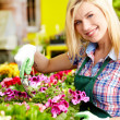 Florists woman working with flowers at a greenhouse.  — Stok fotoğraf