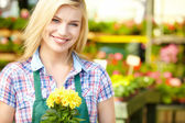 Female florist or gardener in flower shop or nursery — Stock Photo
