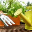 Garden tools — Stock Photo #26228679