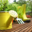 Garden tools — Stock Photo #26228695