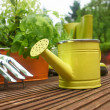 Garden tools — Stock Photo #26228697