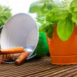Garden tools — Stock Photo #26228721