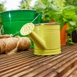 Stock Photo: Garden tools