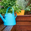 Garden tool and watering can — Stock Photo