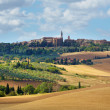 Typical landscape in Val d'Orcia  at summer. The road to Pienza  — Stock Photo