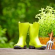 Concept of gardening and hobby — Stock Photo #26345263