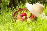 Apple in garden — Stock Photo