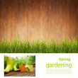 Gardening board concept — Stock Photo