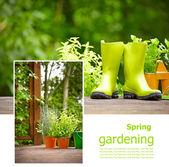 Gardening board concept — Stock Photo