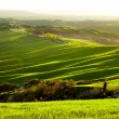 Morning on countryside in Tuscany — Stock Photo #26752087