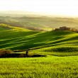 Morning on countryside in Tuscany — Stock Photo #26752089