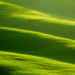 Rolling green hills — Stock Photo #26752093