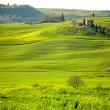 Morning on countryside in Tuscany — Stock Photo #26752121