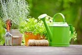 Gardening tools on the terrace in the garden — Stock Photo