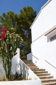 Typical whitewashed houses in village — Stock Photo