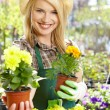 Stock Photo: Florists woman working with flowers at a greenhouse.