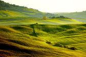Countryside, San Quirico'Orcia , Tuscany, Italy — Stock Photo