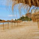 Empty beach — Stock Photo #29412849