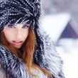Beautiful girl in the park in winter — Stock Photo #29537053