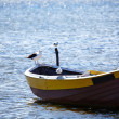 Stock Photo: Lone fishing boat floating on the sea