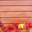 Autumn leaves on wooden background — Stock Photo #31437821